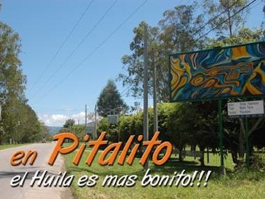 Pagina Web Pitalito